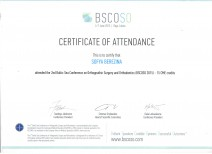 BSCOSO Certificate of Attendance